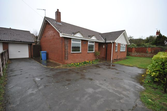 Thumbnail Detached bungalow to rent in Bawtry Road, Everton, Doncaster
