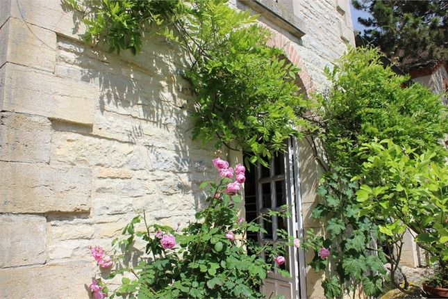Thumbnail Property for sale in Bourgogne, Côte-D'or, Dijon