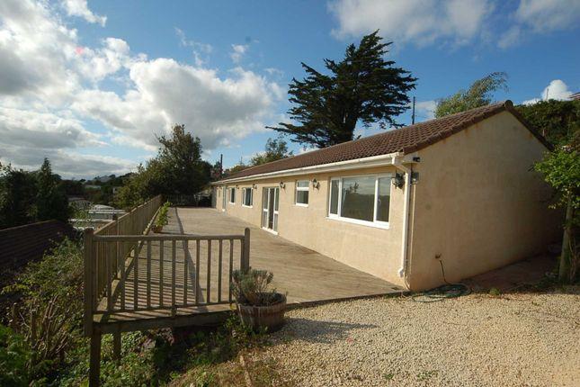 Thumbnail Detached house to rent in Totnes Road, Paignton