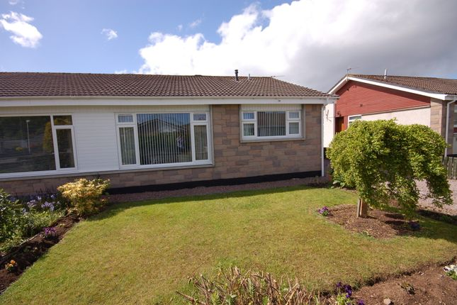 Thumbnail Semi-detached bungalow to rent in Drumdevan Place, Inverness