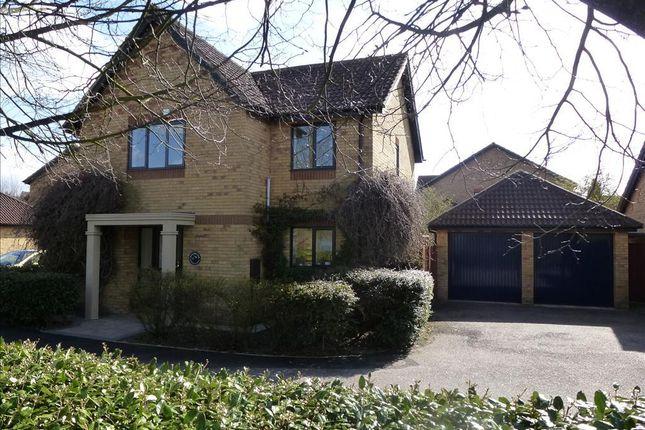 4 bed detached house to rent in Morebath Grove, Furzton, Milton Keynes