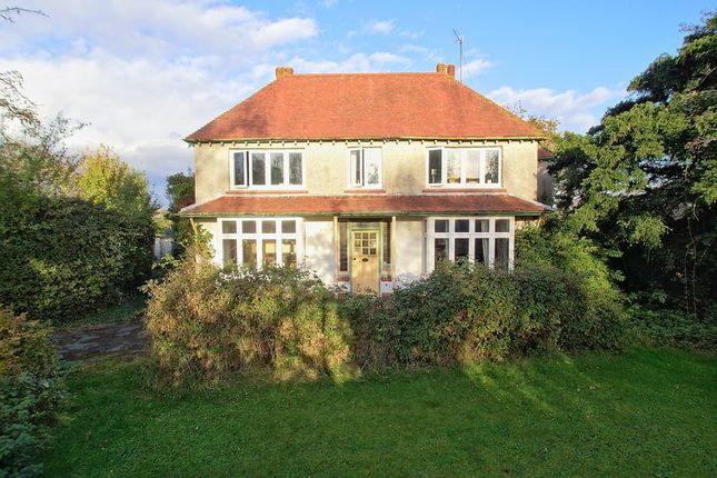Thumbnail Detached house for sale in Elm Grove, Barnham, Bognor Regis