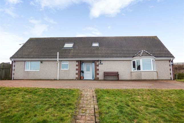 Thumbnail Detached house for sale in Nethertown, Egremont, Cumbria
