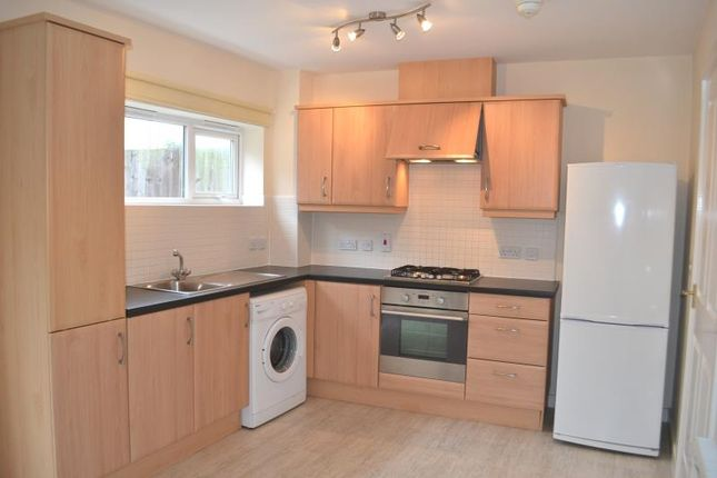 Thumbnail Terraced house to rent in 11 Caxton Road, Carrington Point, Nottingham