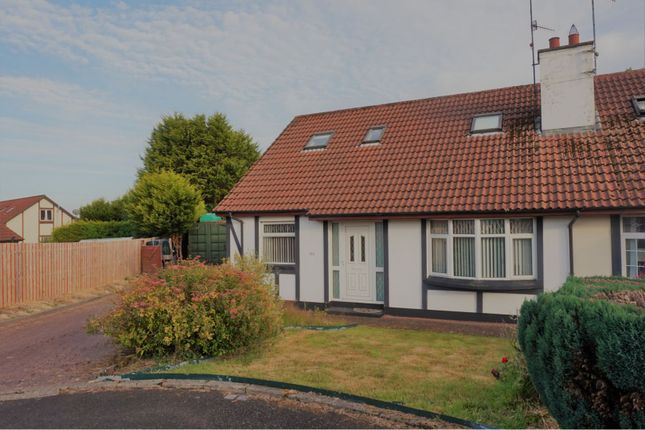 Thumbnail Property for sale in Templegrove, Derry / Londonderry