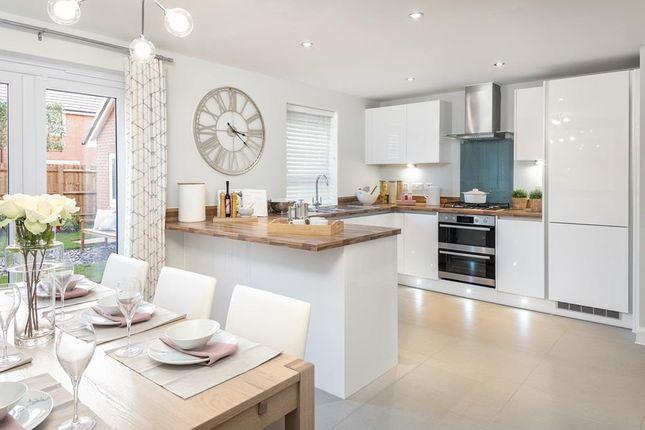 "Thumbnail Detached house for sale in ""Oakham"" at The Ridge, London Road, Hampton Vale, Peterborough"