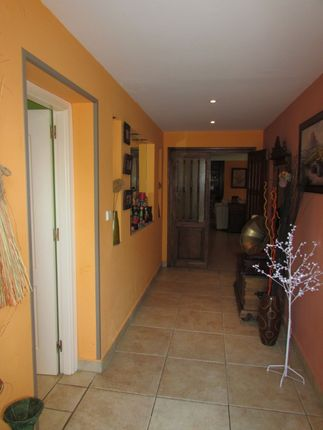 Hallway of Spain, Málaga, Marbella, Nueva Andalucía