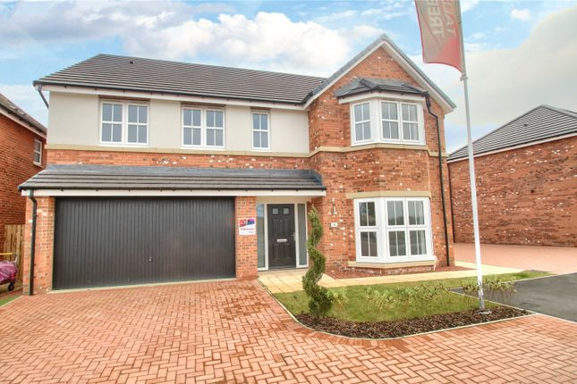 Thumbnail Detached house for sale in Yew Close, Yarm
