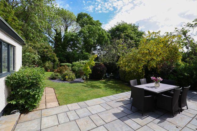 Garden of Bushey Wood Road, Dore, Sheffield S17