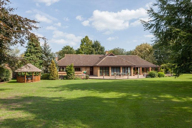 Thumbnail Detached bungalow for sale in Church Road, Yelverton, Norwich