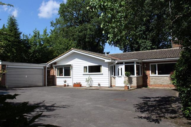 Thumbnail Bungalow for sale in Jubilee Lane, Farnham
