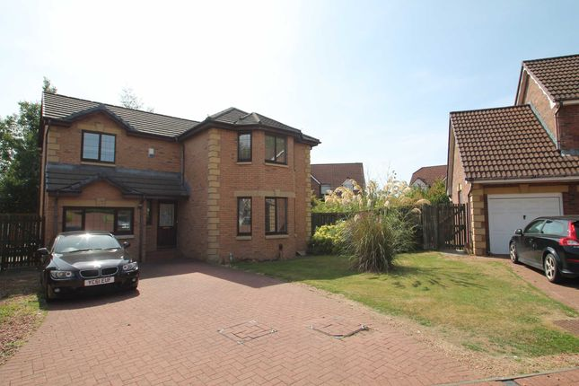 Thumbnail Detached house for sale in Ballochmyle Drive, Glasgow
