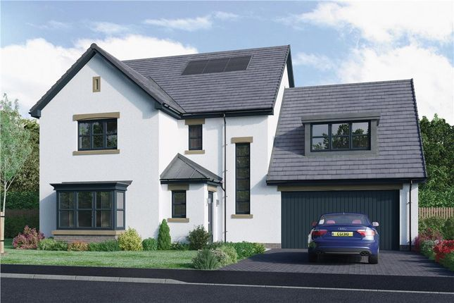 "Thumbnail Detached house for sale in ""Abercromby"" at Blantyre Mill Road, Bothwell, Glasgow"