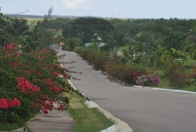 Land for sale in Negril, Westmoreland, Jamaica