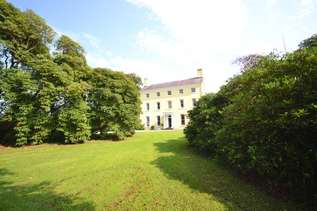 Thumbnail Land for sale in Uplands, Carmarthen