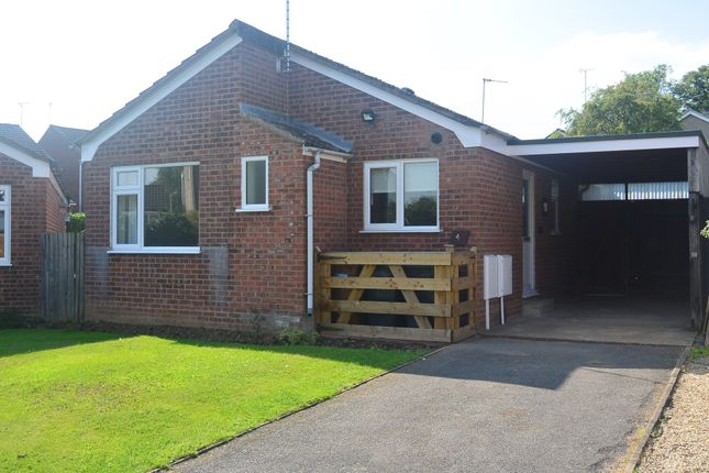 Thumbnail Bungalow to rent in Cottage Close, Ratby