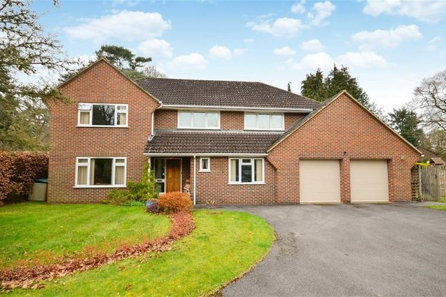 Thumbnail Detached house for sale in Pannells, Lower Bourne, Farnham