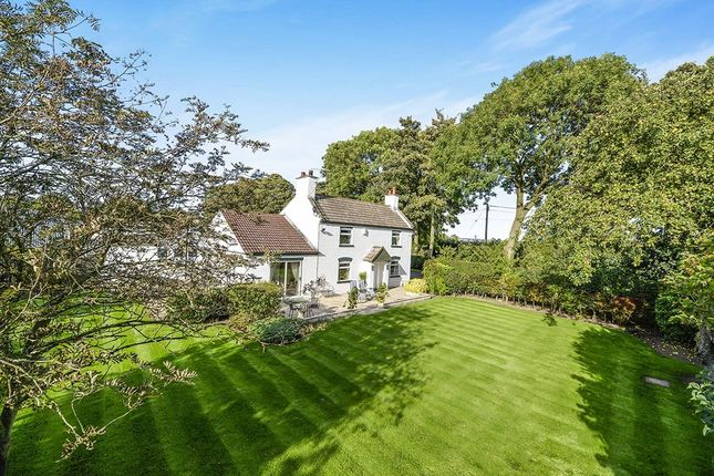 Thumbnail Detached house to rent in Bulmer Farmhouse, Ryton, Malton