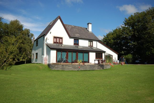 Thumbnail Detached house for sale in Rhydyfelin, Aberystwyth
