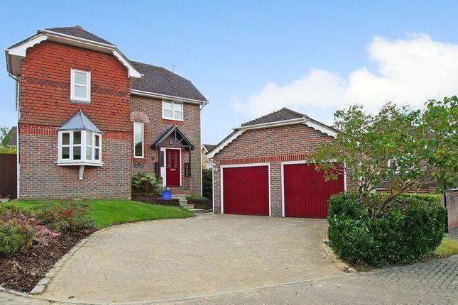 Thumbnail Detached house to rent in Skylark View, Horsham