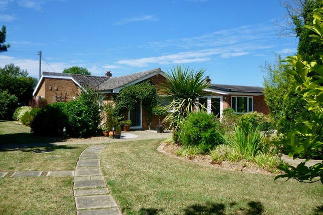 Thumbnail Detached bungalow for sale in Sneath Road, Aslacton, Norwich