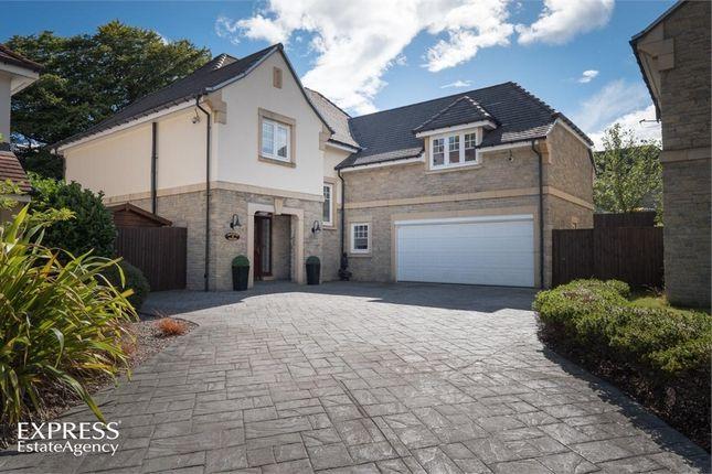Thumbnail Detached house for sale in Macaulay Grange, Hazlehead, Aberdeen