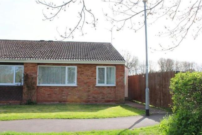 Thumbnail Bungalow to rent in Burchs Close, Taunton