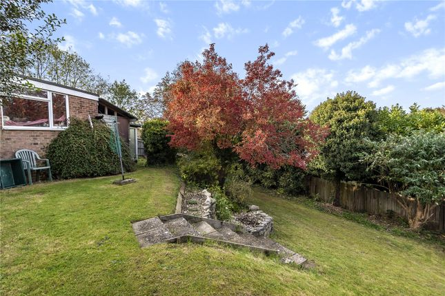 Picture No. 18 of Lime Road, Alresford, Hampshire SO24