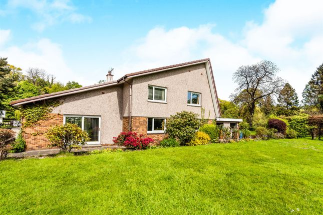 Thumbnail Detached house for sale in Doo'cot Brae, Alloa