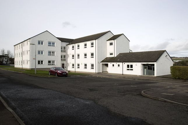 Thumbnail Flat to rent in Alloway Place, Dundee