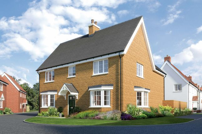 Thumbnail Detached house for sale in Berryfields, Chapel Road, Tiptree, Essex