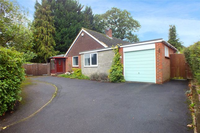 Thumbnail Detached bungalow for sale in Hartford Road, Hartley Wintney, Hook