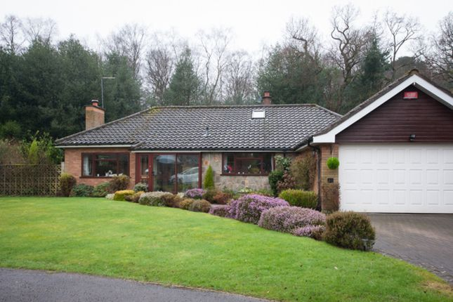 Thumbnail Detached bungalow for sale in Tudor Hill, Sutton Coldfield