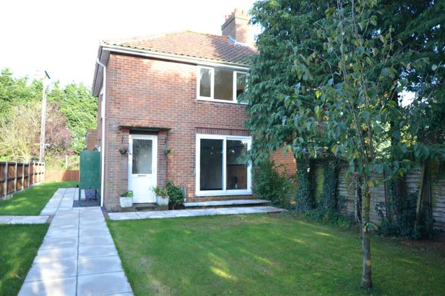 Thumbnail Semi-detached house for sale in Hall Lane, Wacton, Norwich