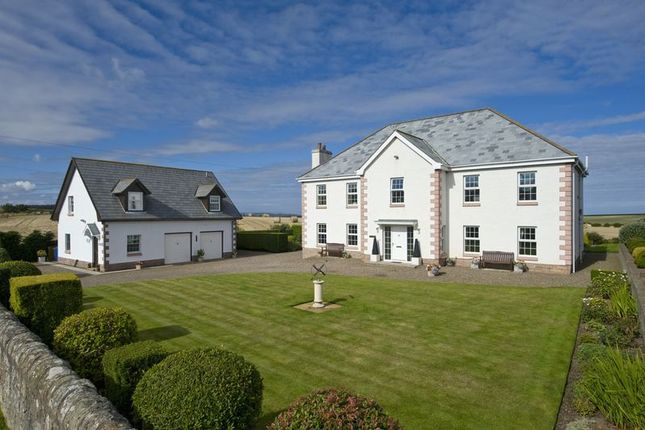 Thumbnail Detached house for sale in Fenwick, Berwick-Upon-Tweed