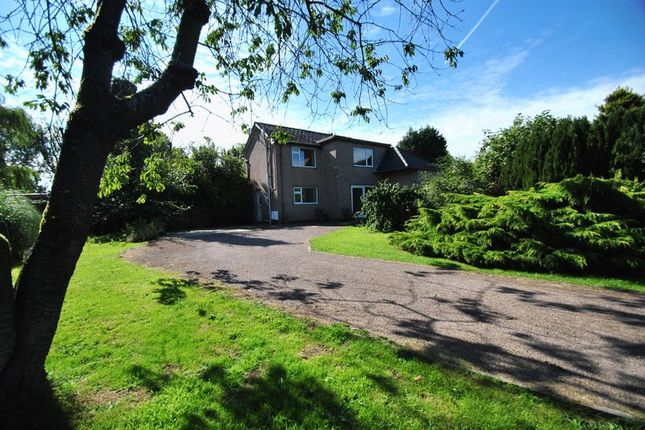 Thumbnail Cottage to rent in Clements End, Nr. Coleford, Gloucestershire