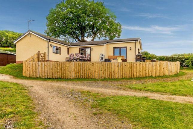 Thumbnail Detached bungalow for sale in Sicklebrook Lane, Coal Aston, Dronfield, Derbyshire