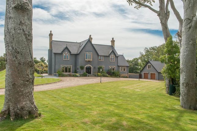 Thumbnail Detached house for sale in 62, Dunover Road, Greyabbey