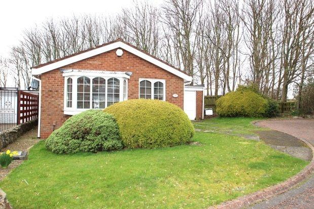 Thumbnail Bungalow to rent in Aldeburgh Avenue, Lemington Rise