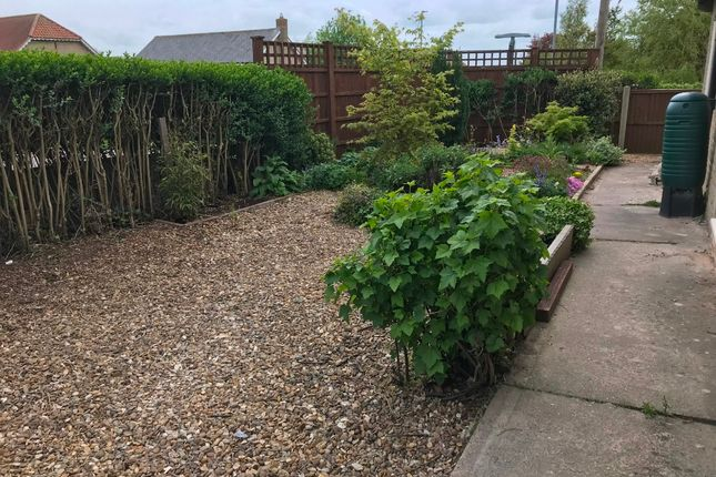 Thumbnail Bungalow to rent in Top Road, Croxton Kerrial