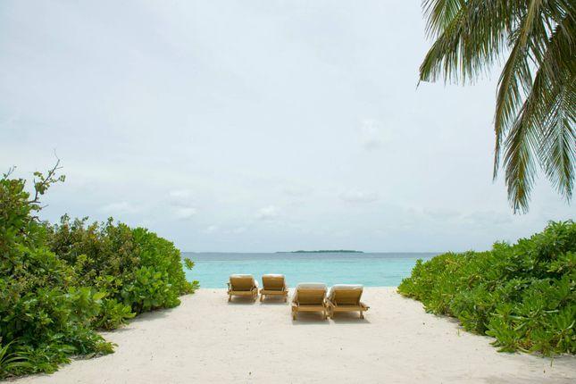 Image 5 of Kunfunadhoo Island, Baa Atoll, Republic Of Maldives