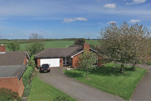 Thumbnail Detached bungalow for sale in Lime Farm Way, Great Houghton, Northampton