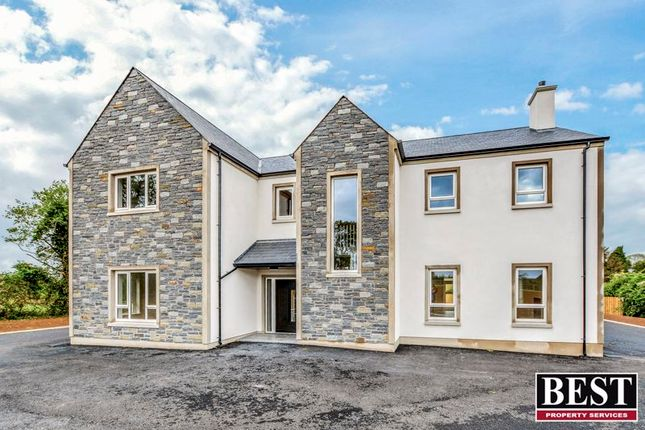 Thumbnail Property for sale in Drumflugh Road, Benburb, Dungannon