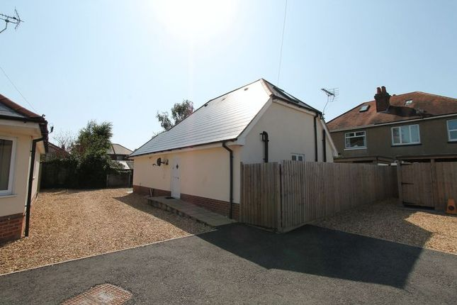 Thumbnail Detached bungalow to rent in Wycliffe Road, Winton, Bournemouth
