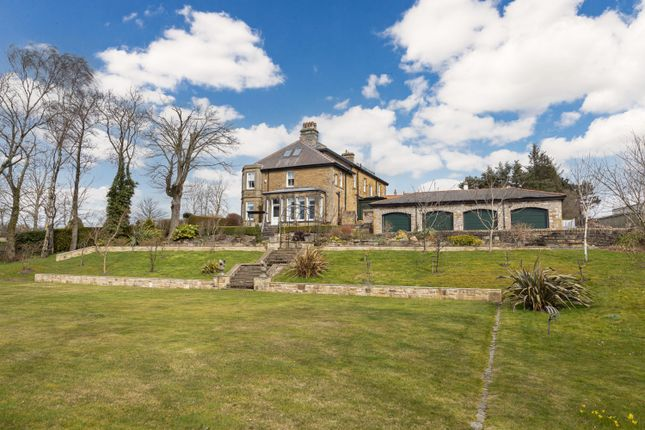 Thumbnail Detached house for sale in Hillcrest, Lanchester Road, Maiden Law, Lanchester, County Durham