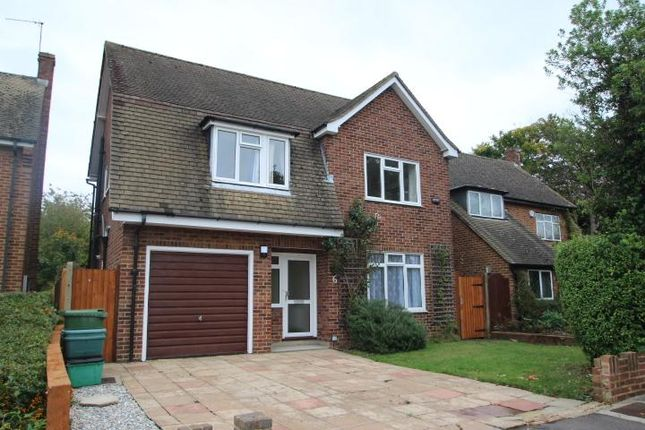 Thumbnail Detached house to rent in Nut Tree Close, Orpington, Kent