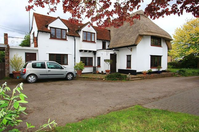 Thumbnail Detached house for sale in Lower Green Road, Blackmore End, Braintree, Essex