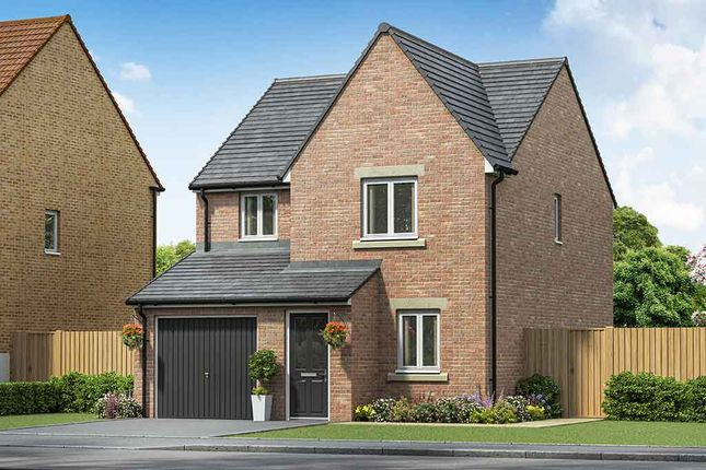 "Thumbnail Property for sale in ""The Redwood"" at Cheviot Place, Newton Aycliffe"