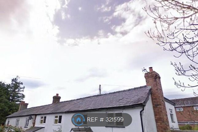 Thumbnail Semi-detached house to rent in Old Bedstone Road, Bucknell