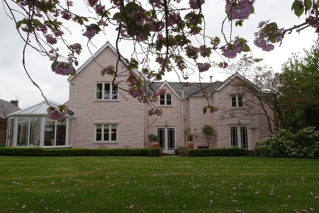 Thumbnail Detached house for sale in Shortlands, Newton Nottage Road, Porthcawl